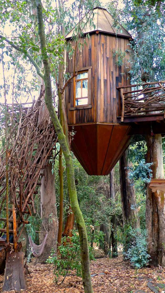 Lantern Tree house California