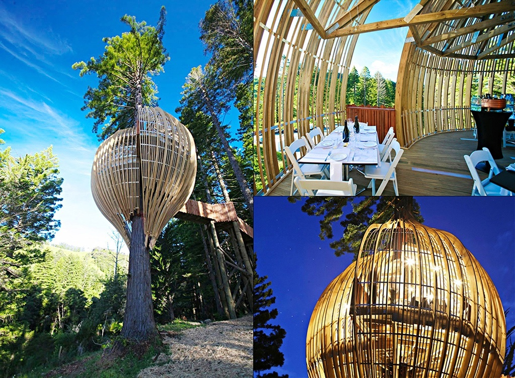Redwood Tree house restaurant in New Zealand