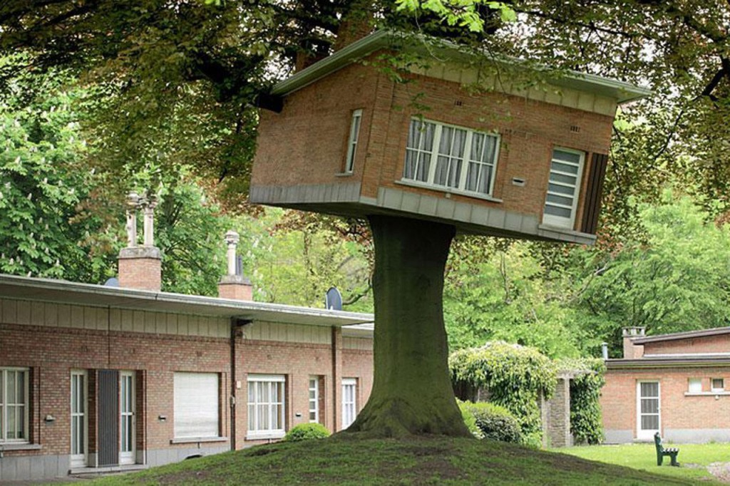 Senior Center Turned Tree house in Belgium
