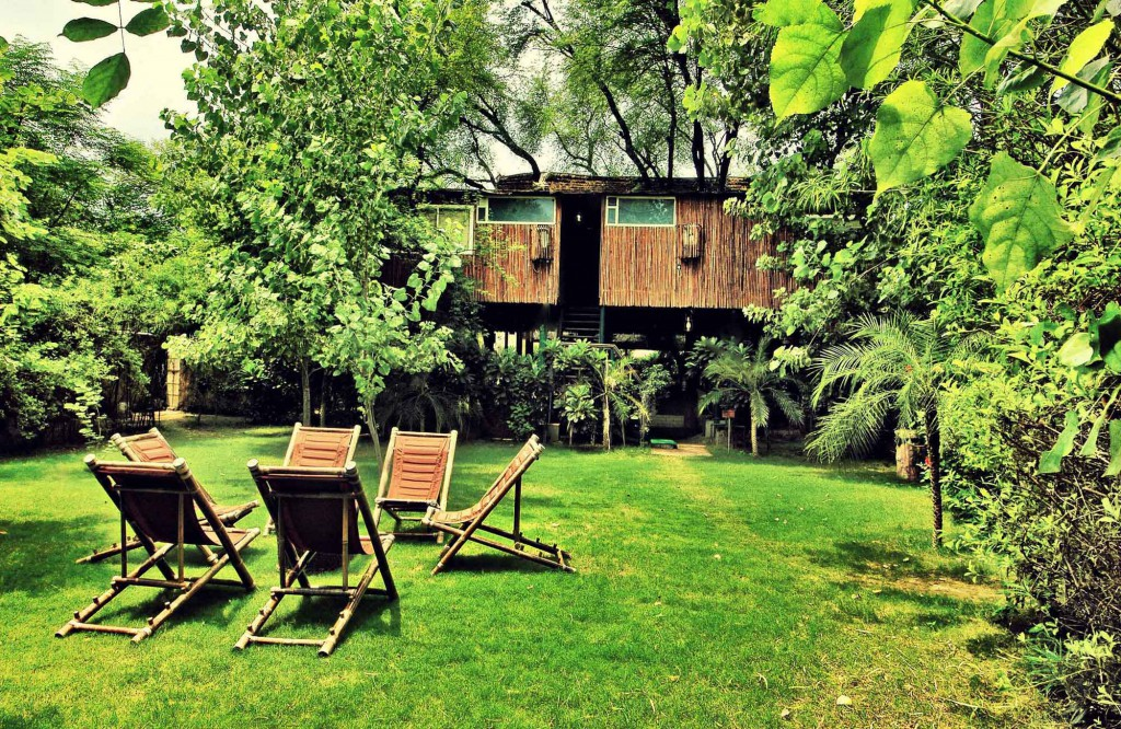 Tree House Resort in Jaipur, India