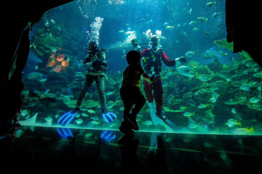 underwater park in Kuala Lumpur