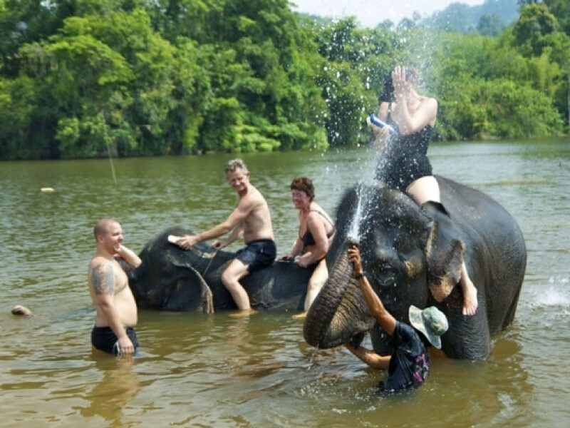 Mahawangchang Elephant Camp